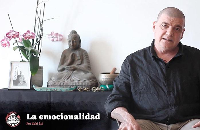 la emocionalidad thum